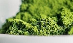 ecoduna Premium Algen